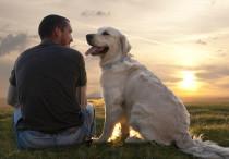 Bild für Singles mit Hund