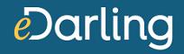 Die besten-Partnerbörsen-eDarling-logo